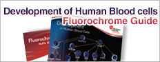Development of Human Blood cells Fluorochrome Guide